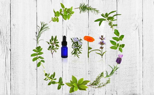 5 Essential Oil Pairs for Gut Health 1